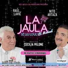 Imagen de LA JAULA DE LAS LOCAS
